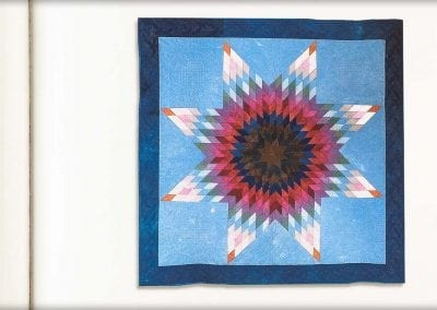 Old Dyes, New Quilts _10